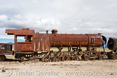 DSC06964 - Rusty Steam Locomotive  - Train Junkyard