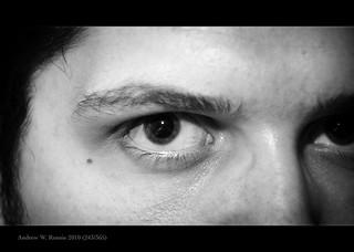 The Stare (243/365)