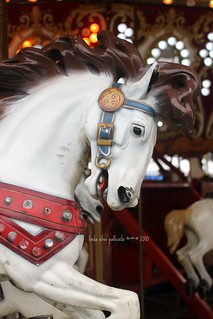 striking steed on merry-go-round