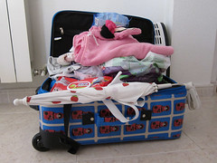 art(0.0), vehicle(0.0), baby carriage(0.0), car seat(0.0), toy(0.0), suitcase(1.0),