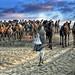 INDIA1782/ SONY WORLD PHOTO AWARD by Glenn Losack, M.D.
