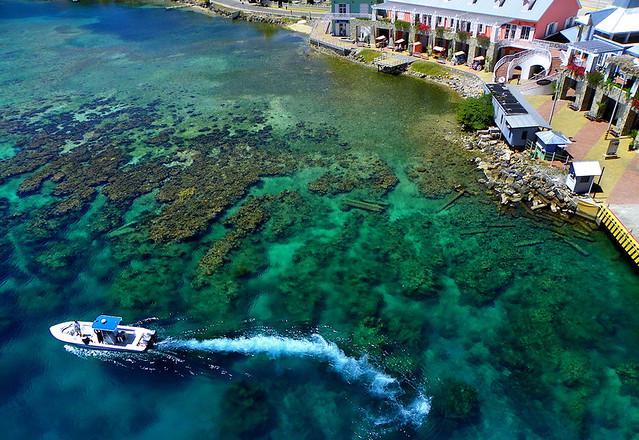 Port Roatan