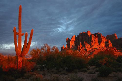 arizona phoenix desert saguaro lostdutchmanstatepark supersitionmountains