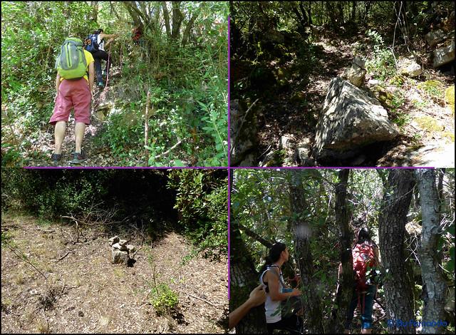 El Pla de Manlleu - Sector La vall de L'Infern -00- Accesos -02- Sendero acceso al Subsector Can Llepaculs (02-07-2017)