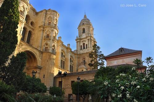 Catedral de Malaga (DSC_6898)