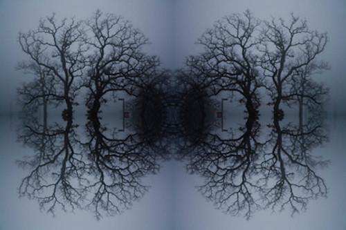 Advanced Digital Imaging - Stephanie Bibb-17