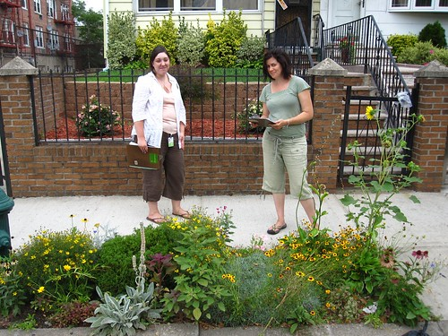 Greenest Block In Brooklyn Contest