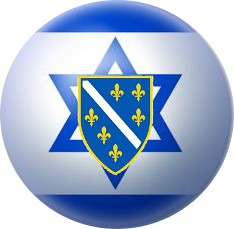 Bosniak & Jewish Solidarity (Official Logo, Transparent Background)