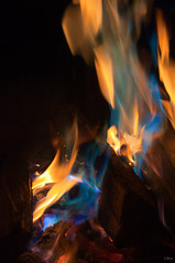 Colorful Fire III