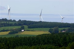 windmill, field, plain, wind, wind farm, rural area, wind turbine, grassland,