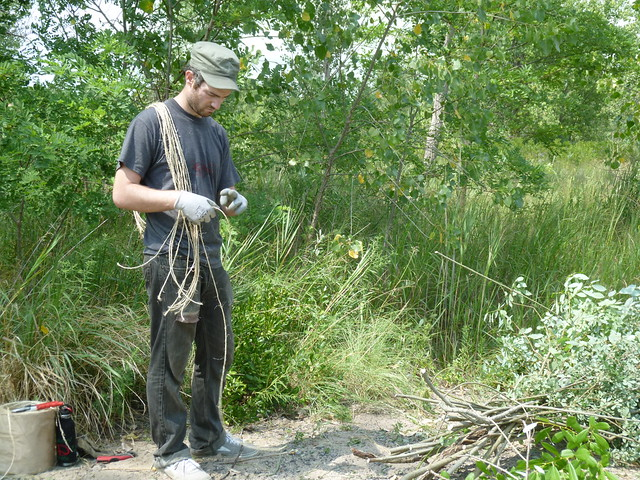 Dougherty's assistant, Andy Lynch, bundles harvested willow saplings. Photo by Elizabeth Peters.