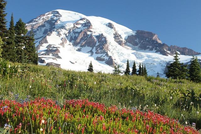 Mount Rainier National Park by CC user 37276114@N02 on Flickr