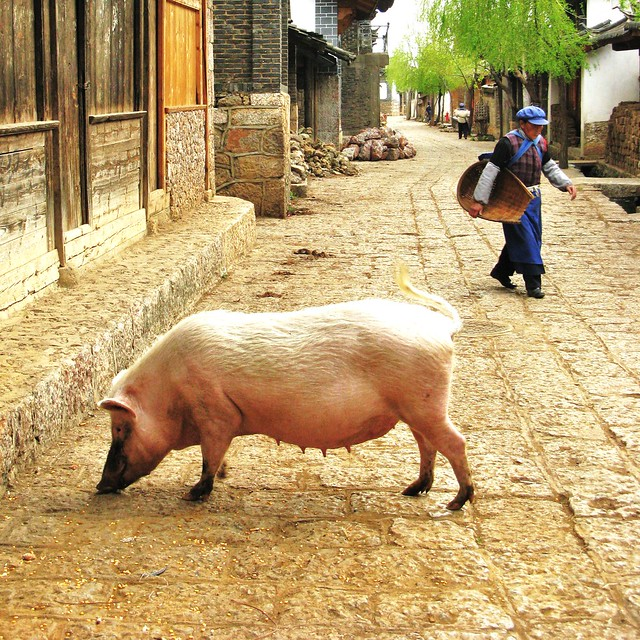 Street scene in Baisha - near Lijiang, China