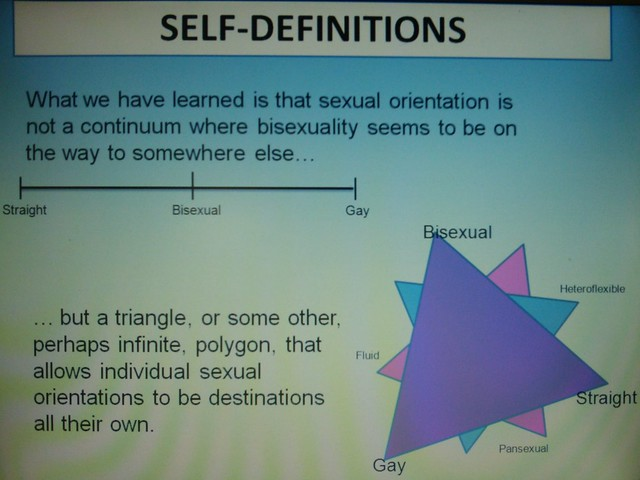 Sexual orientation definition/meaning