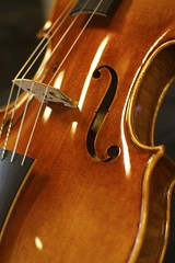 bowed string instrument, plucked string instruments, string instrument, violone, bass violin, double bass, close-up, cello, string instrument,