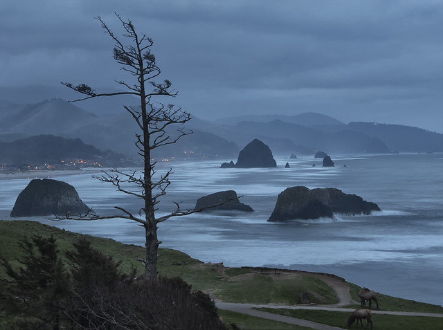 Haystack Rock on the Oregon Coast by CC user snowpeak on Flickr