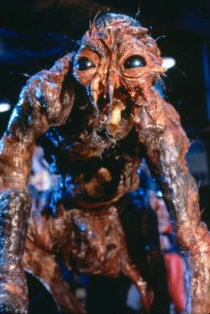 Jeff Goldblum Would Happily Appear in a Sequel to 'The Fly' |Jeff Goldblum The Fly