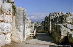 Tyrns, Greece  2005