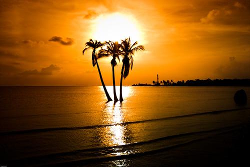 El Bosque Beach
