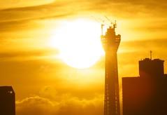 Sunrise Skytree