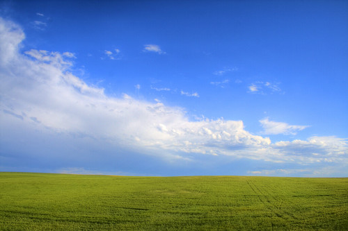 blue windows sky green field clouds wheat idaho rexburg