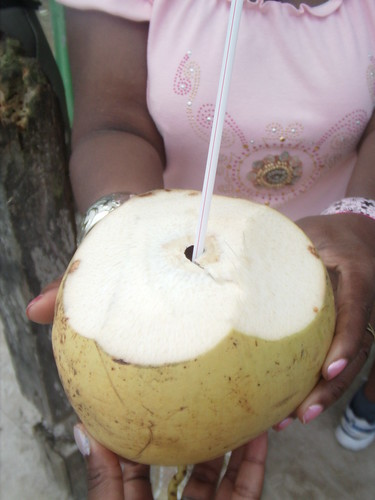 Coconut Water Diary at Surinam Border  8