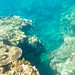 coral reef diving at Gubat, Sorsogon, Philippines by nonoiphotography (post and run mode)