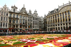 Belgique - Bruxelles - 2010 Tapis de Fleurs Grand-Place