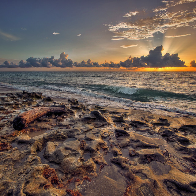 Sunrise from Carlin Park, Jupiter, Florida