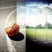 basketball is a mental sport