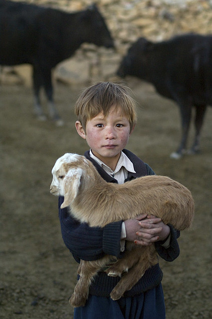 Bamiyan province, Afghanistan, 2006, by Steve McCurry