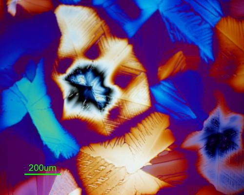 顯微鏡下的硝酸釷。(圖:EMSL)