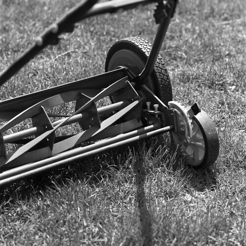 Lawnmower | by David Whitehall
