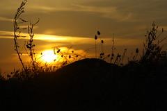 Bild: Sardinien