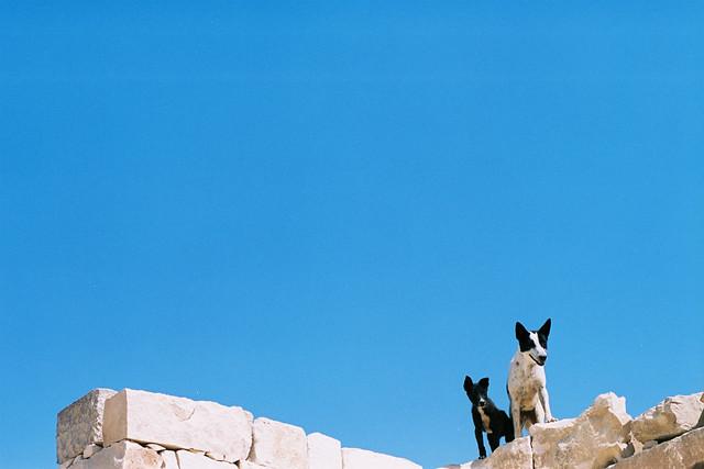 Egypt D8-033
