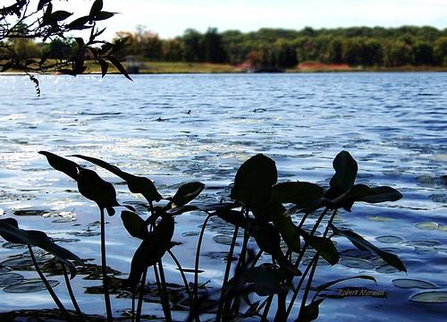 summer lake nature beautiful digital outdoors kodak pennsylvania z740