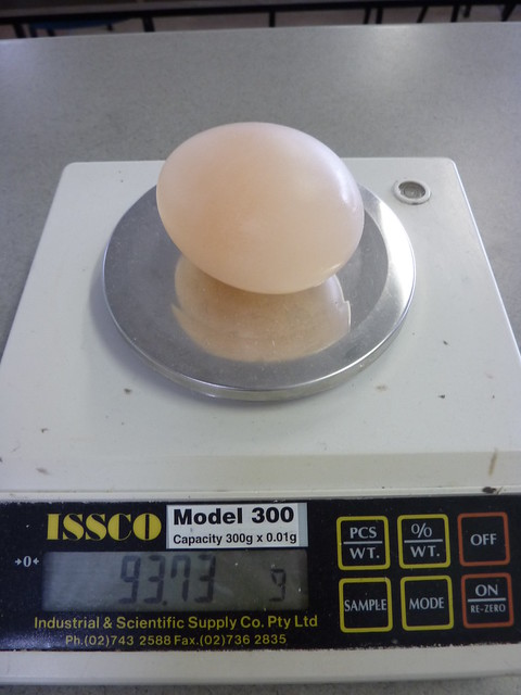 Osmosis Experiment: Dissolving Egg Shells With Vinegar