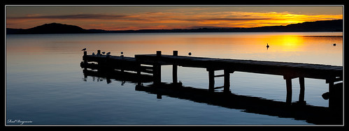 newzealand sunrise jetty northisland