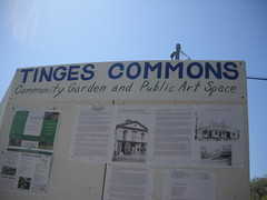 Tinges Commons  bulletin board