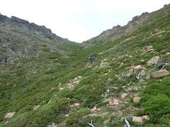Le vallon supérieur et Bocca di Saltu
