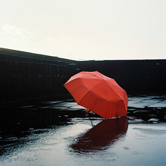 Red Umbrella ( in the rain )