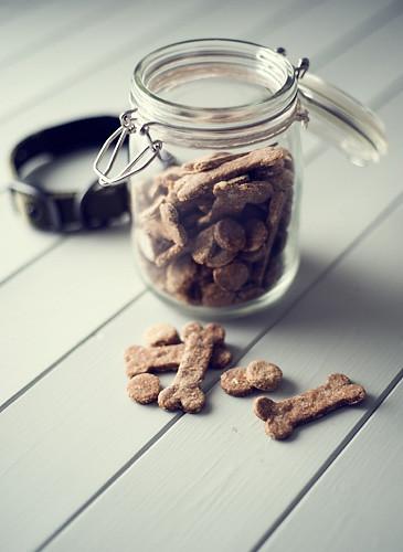 healthy dog biscuit