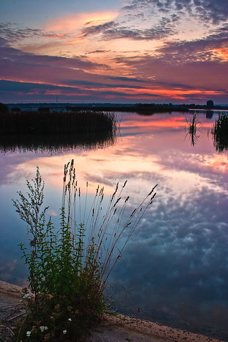lake reflection water clouds sunrise canon reeds bacau