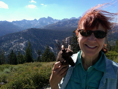 Anne & Buddy Bison at Inyo National Forest with the Minaret Mountains in the background.