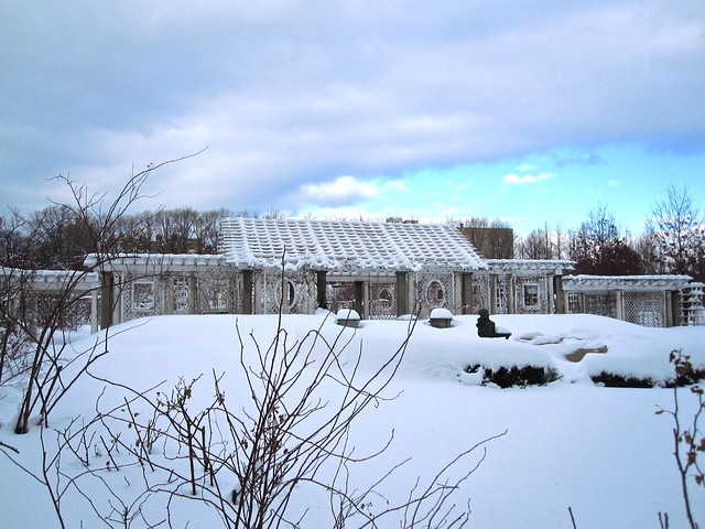 The Cranford Rose Garden under snow. Photo by Rebecca Bullene.