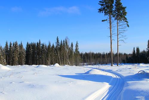 winter sun snow canon suomi finland view sunny scene 7d lumi talvi maisema laukaa aurinko näkymä aurinkoinen valkola anttospohja
