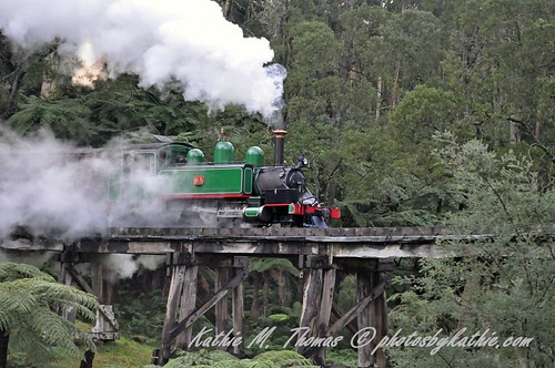 Puffing Billy Train, Selby
