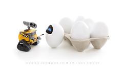 Toys Series