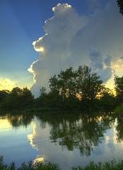 reflecting rays