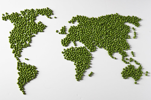 197/365 - World Peas (aka Give Peas a Chance)